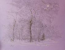 Winter by Aleksandr Petrunin