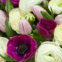 Blumengruß / 27 von Heidi Bollich