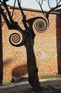 Spiralen am Baum by alana