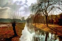 wetland von Wolfgang Pfensig