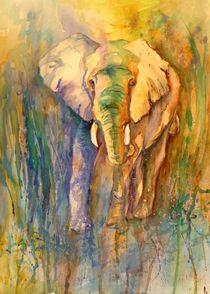 Elefant von Claudia Pinkau