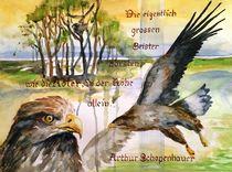 Adlergeschrei von Claudia Pinkau