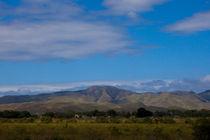 Cordillera Central von Matilde Simas