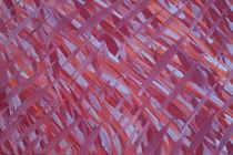 Neon Jungle by ConnieAnn LaPointe