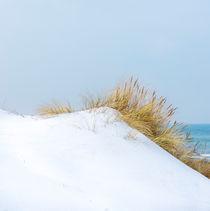 Schnee in den Dünen von Patricia Stein