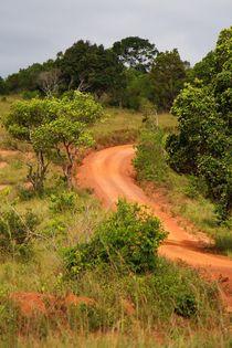 Die Weiten der Shimba Hills von ann-foto