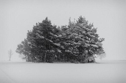Michal-kabzinski-008-winter