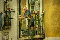 Lisboa-pondering