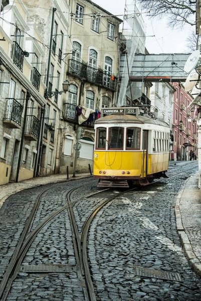 Point-tram