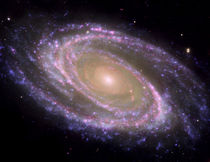 Spiral galaxy Messier 81. von Stocktrek Images