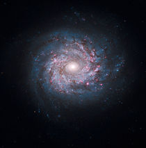 Face-on spiral galaxy NGC 3982. von Stocktrek Images