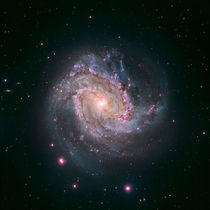 Barred spiral galaxy Messier 83. by Stocktrek Images