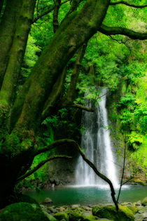 Waterfall in Azores by Gaspar Avila