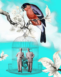 Jailbirds by Sherri Leeder