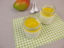 Img-2048-joghurt-mango
