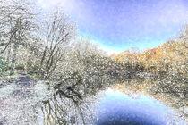 The Winters Day Pond von David Pyatt