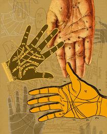 Life Lines by Sherri Leeder