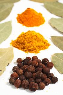 Spices von Gaspar Avila