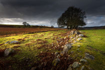 Approaching storm over Brecon, South Wales UK von Leighton Collins