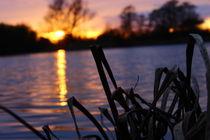 Sonnenuntergang am Funkturmsee von Hendrik Molch