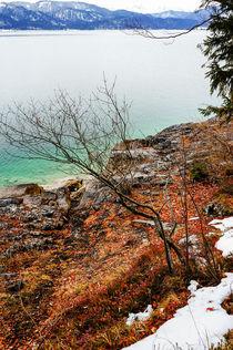 At a winterly lakeside von Thomas Matzl