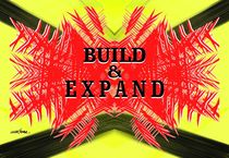 Build & E x p a n d von Vincent J. Newman