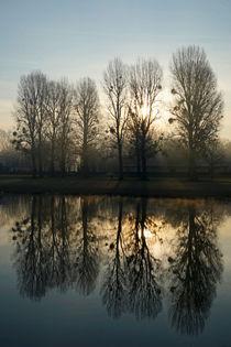 Jetzt kommt die Sonne by Stephan Gehrlein