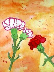 Carnations by nellyart