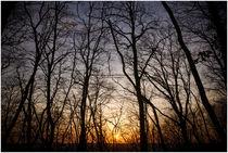 Sonnenuntergang by Susi Stark