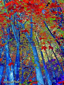 Walk In The Woods abstract by Mary Lee Parker