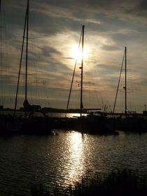 Hafen von Orth in der Abendsonne von Simone Marsig