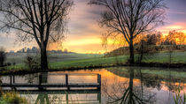 Pond Night Shot by Focal Fokus