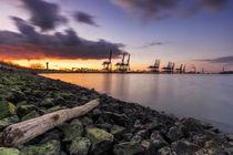 Hamburg Hafen Altenwerder Elbe by Dennis Stracke