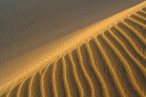 Sandlinien by Wolfram Wildner
