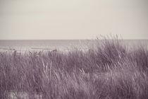 Silver Beach von Björn Wortmann