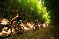 Eco-tourism von Gaspar Avila