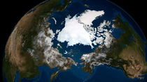Arctic sea ice. by Stocktrek Images