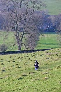 Hill Walking von Rod Johnson