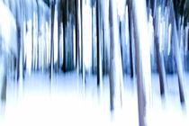 .. cool wood .. von gugigei