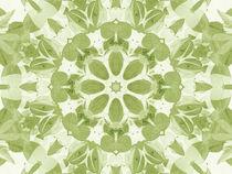 Leaf Kaleidoscope by tataniarosa
