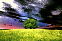 Lime Tree by mario-s