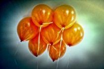 Luftballons 008 von leddermann