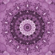 Purple Kaleidoscope von tataniarosa