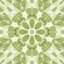 Leaf Kaleidoscope - Square by tataniarosa