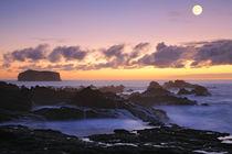 Seascape by Gaspar Avila