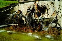 Neptunbrunnen von Schloss Linderhof von Sabine Radtke
