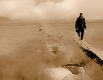 In the fog. by Maks Erlikh