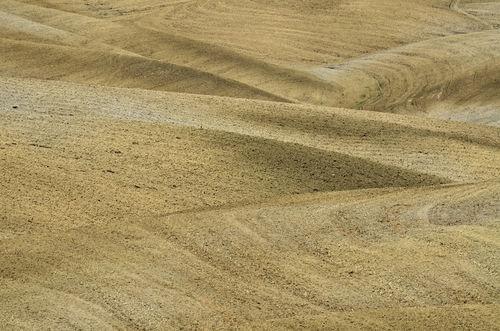 Field-tuscany