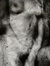 FUSION by philippe berthier