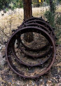 Mud Wheels von Don Nelson